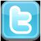 Twitter Logo Smaller